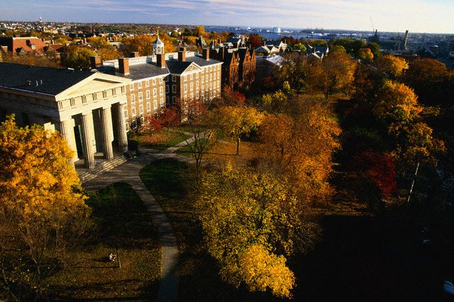 Campbell university admissions essay