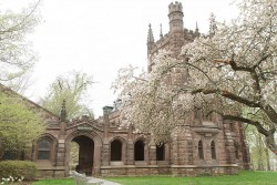Asian Discrimination in Admissions, Asian Americans in Admissions, Admission Discrimination and Asians