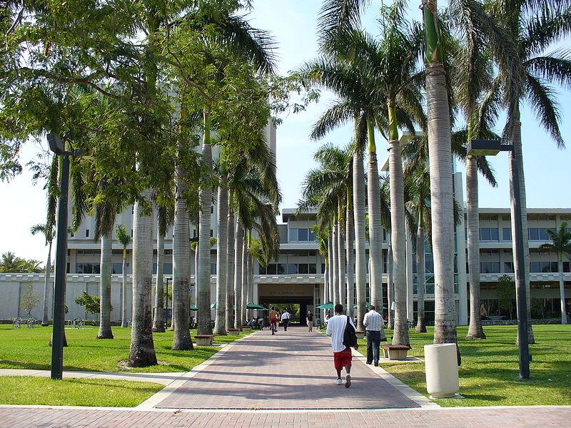 UMiami, University of Miami, Admission to UMiami