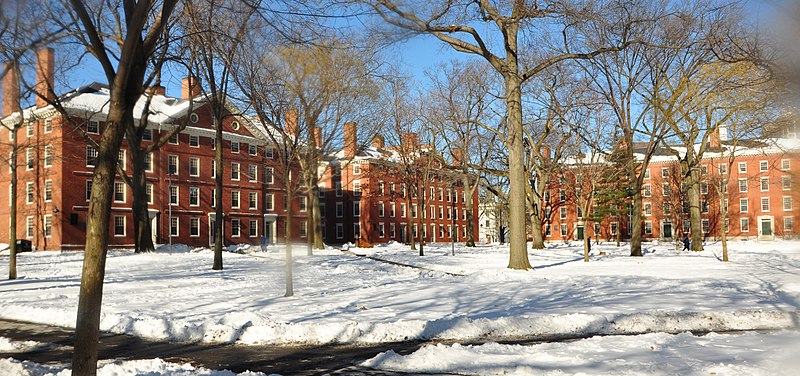 Ivy League and DACA, DACA at the Ivy League Colleges, Undocumented in the Ivy League