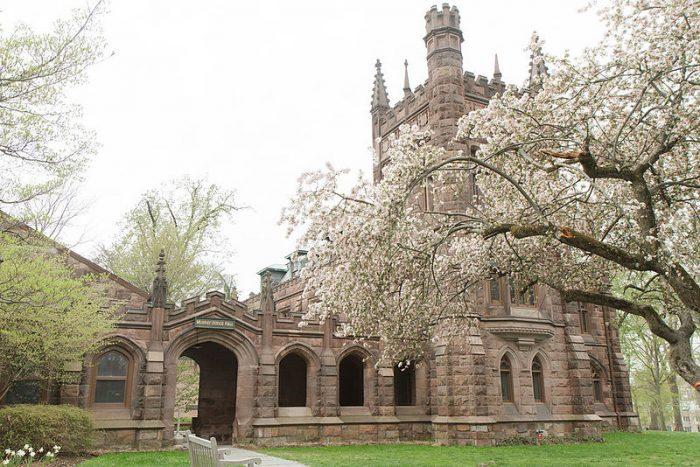 Princeton Basketball, Ivy Basketball, Ivy League Athletics
